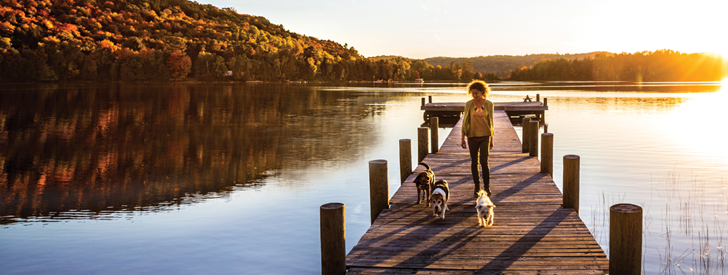Woman walking on pier with dogs